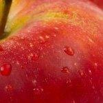 Apple desbanca a LG como la tercera mayor compañía de móviles del mundo #apple