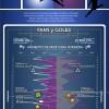 Cristiano Ronaldo vs Leo Messi en FaceBook #infografia #infographic #socialmedia #marketing #facebook