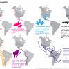 Rutas de intercambio EEUU – México #infografia #importaciones