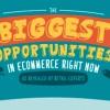 Las mayores oportunidades en el ecommerce hoy en día.