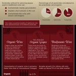Guía del vino ecológico #infografia #alimentacion