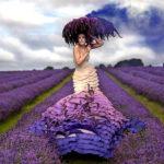 Wonderland by Kirsty Mitchell #fotografia #photo #design