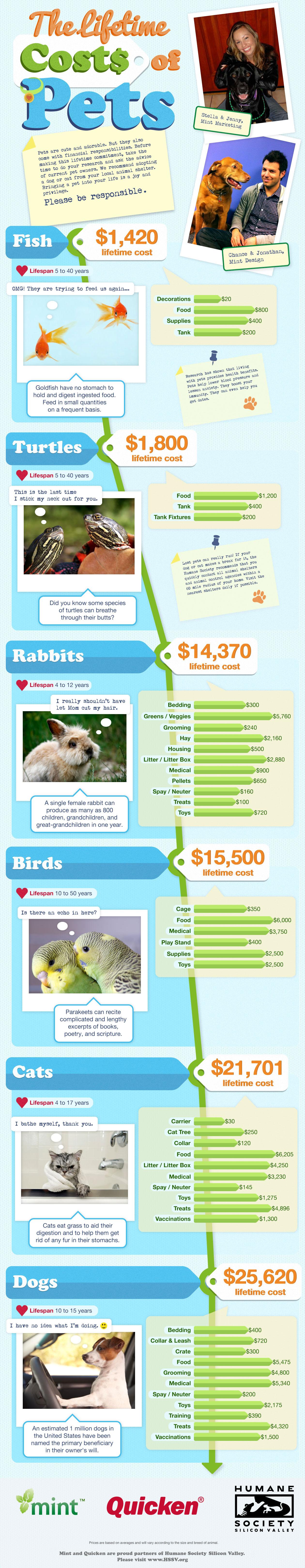 coste de mantener a tu mascota