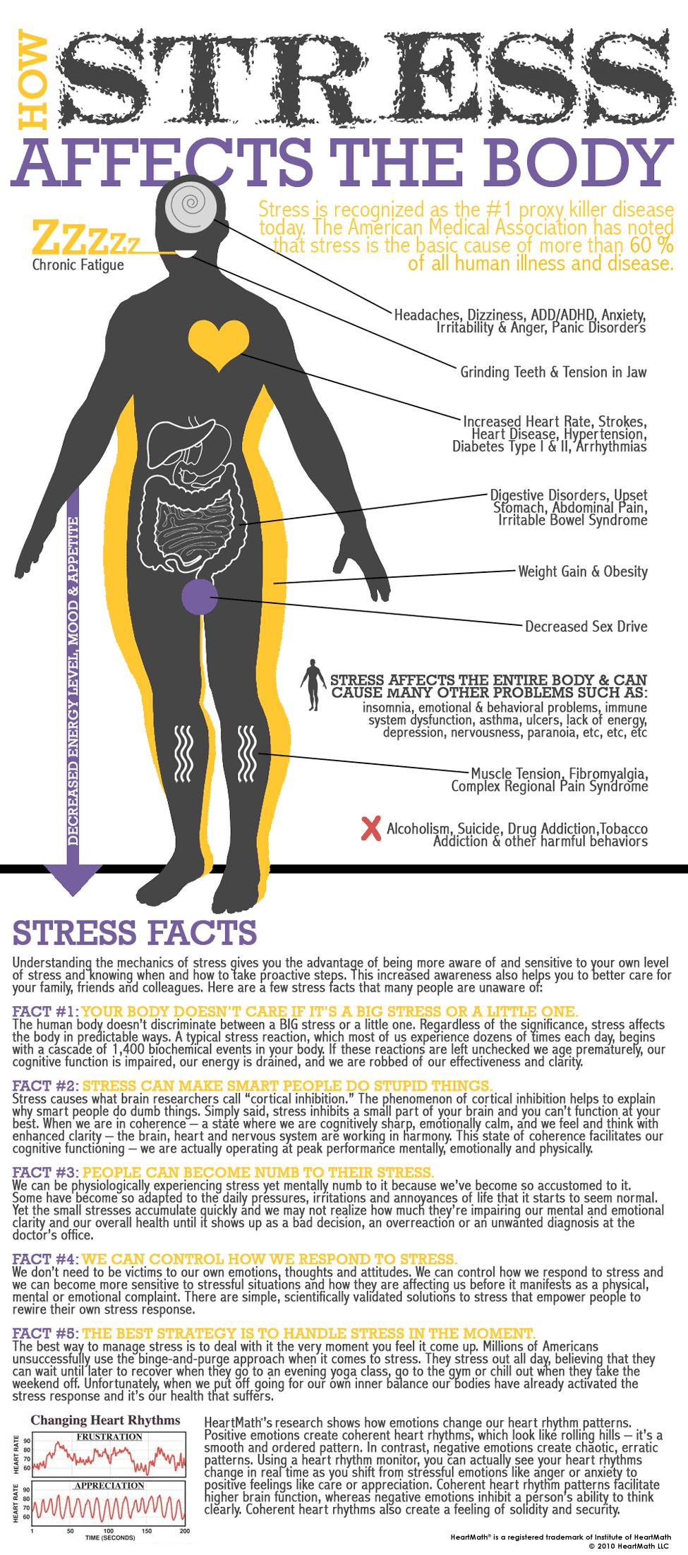 como el estrés afecta al cuerpo