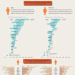 Coste y beneficios de la educación en el Mundo #infografia #infographic #education