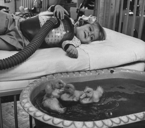 Terapia con patos para niños enfermos 1956