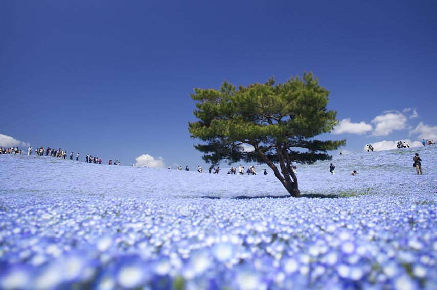 Fotos de los lugares más bellos del mundo 12
