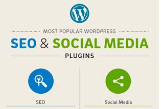 Los 20 plugins WordPress más populares para SEO y Social Media.