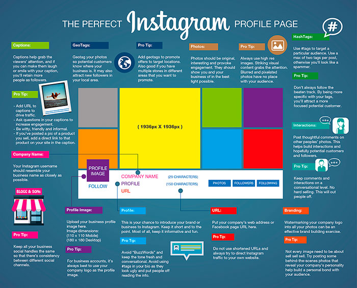 Infografia sobre el perfil perfecto de instagram