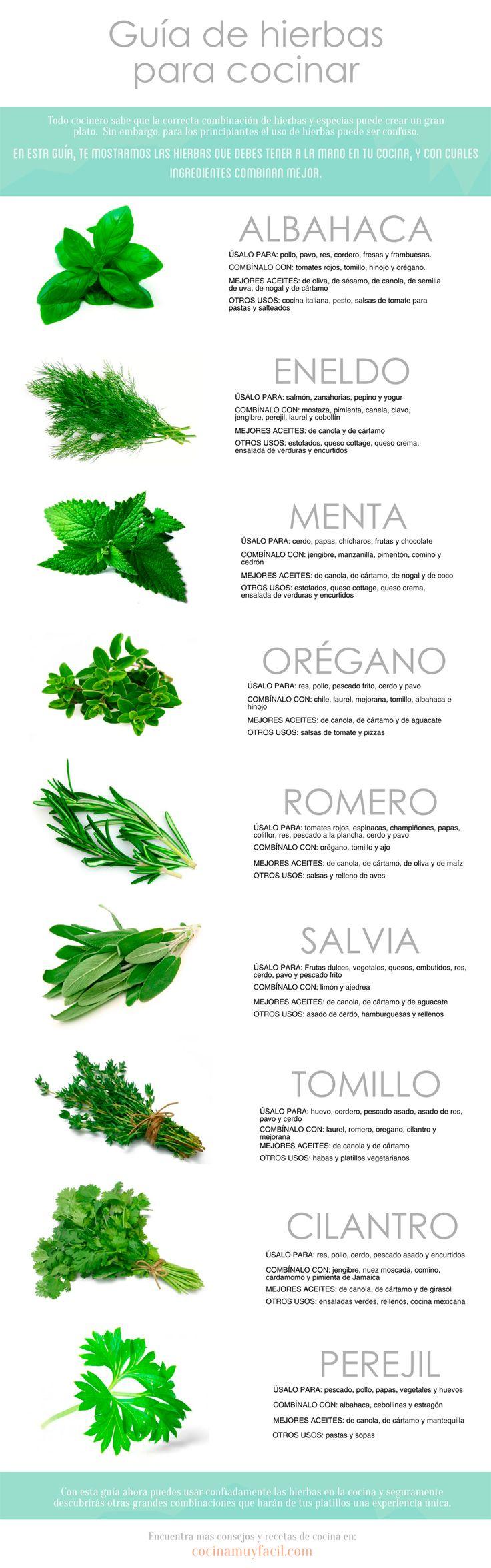 guia-hierbas-aromaticas-cocinar