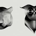 Animals in Moiré, ilustraciones de animales de Andrea Minini