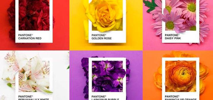 Pantone Flowers, fusión de colores y flores