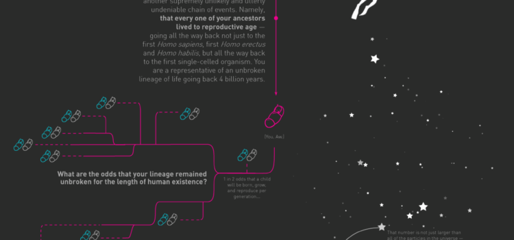 ¿Cuáles son las probabilidades? #infografia #ciencia #infographic #design