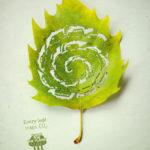 Cut-Away Leaf Art #design #art #fotografia