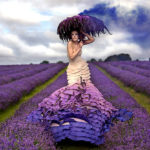 Wonderland by Kirsty Mitchell #fotografia #photo #design