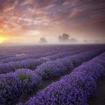 30 Landscape Photography #photography #fotografia #design