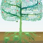 Nosotros somos la web #infografia #infographic #internet #web