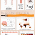 50 datos curiosos que ignorabas sobre tu piel. #infografia #curiosidades