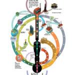 Economía circular. La manera de parar el consumo desmedido. #infografia #economia