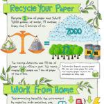 Como hacer tu empresa más ecológica. #infografia #medioambiente
