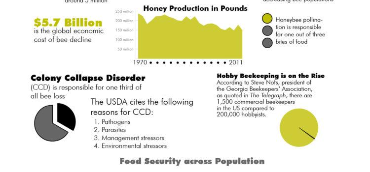 Abejas y la alimentación. #alimentacion #seguridad