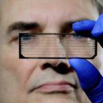 Los secretos del ADN atrapados por una avalancha de datos