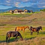 Stock Farm Residence en Montana #arquitectura #design #architecture #fotografia