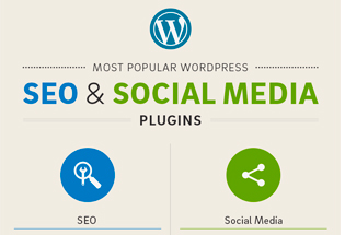 Los 20 plugins WordPress más populares para SEO y Social Media.