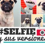 Las 21 versiones de un selfie.
