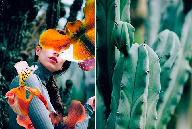 Collage analógico de la fotógrafa Rocío Montoya.