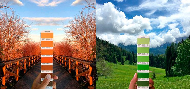 Explorar el mundo a través de los colores Pantone